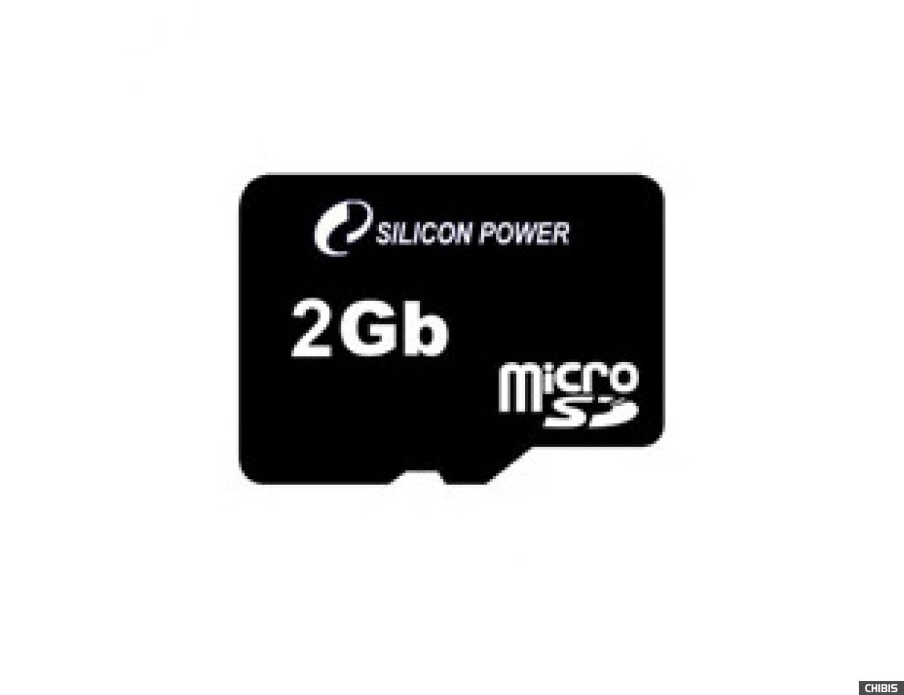 Карта памяти SILICON POWER MicroSD 2GB card no adapter