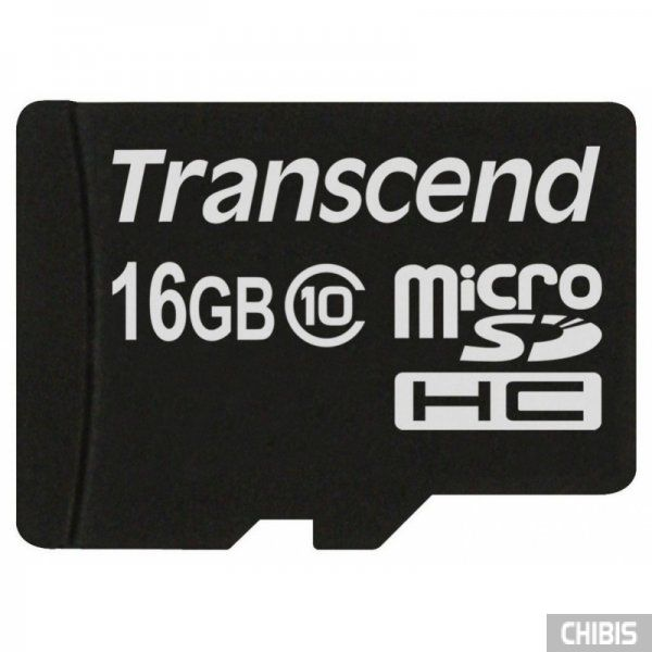 Карта памяти Transcend MicroSDHC 16GB Class 10 no adapter TS16GUSDC10