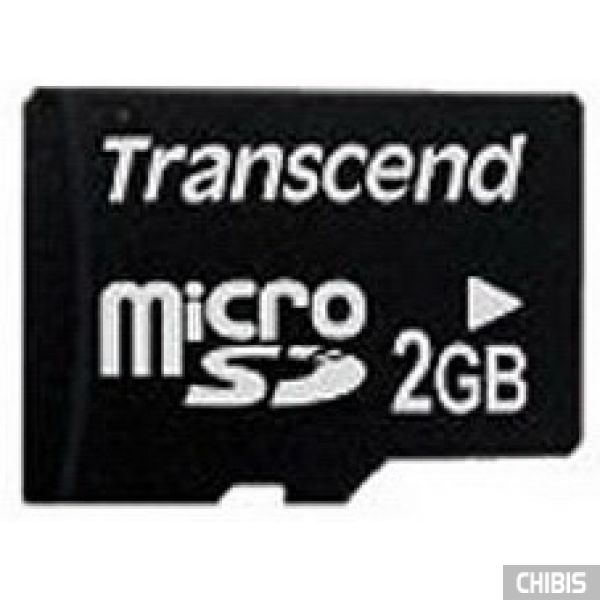 Карта памяти Transcend MicroSD 2Gb без SD адаптера